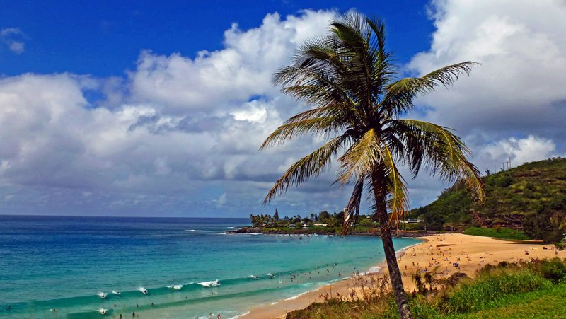 Waimea Bay on the Noth Shore of Oahu